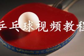 《全民解答》乒乓球视频教程